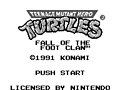 Jugar Teenage Mutant Hero Turtles online